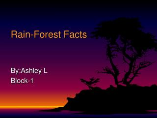 Rain-Forest Facts