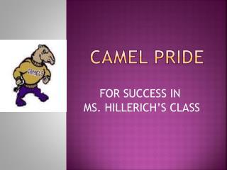 CAMEL Pride
