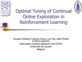Optimal Tuning of Continual Online Exploration in Reinforcement Learning