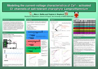 Modeling the current-voltage characteristics of Ca 2+ - activated