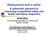 Making decent work a reality:   A systematic approach to improving occupational safety and health and labour inspection