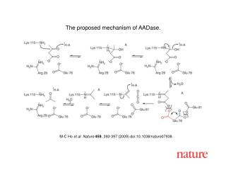M-C Ho  et al. Nature 459 , 393-397 (2009) doi:10.1038/nature0 7938