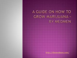 A Guide on How to Grow Marijuana – By Medmen