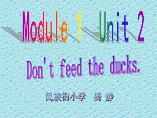 Module 1  Unit 2