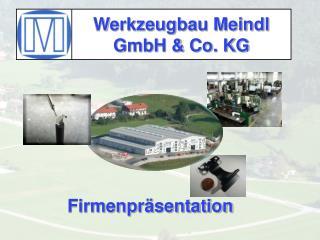 Werkzeugbau Meindl GmbH & Co. KG