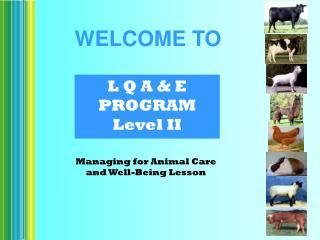 L Q A & E PROGRAM Level II
