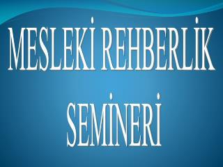 MESLEKİ REHBERLİK  SEMİNERİ