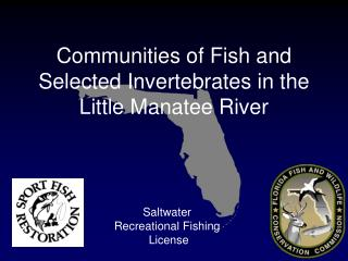 Saltwater  Recreational Fishing  License