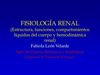 FISIOLOGÍA RENAL (Estructura, funciones, compartimientos líquidos del cuerpo y hemodinámica renal)