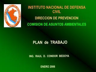INSTITUTO NACIONAL DE DEFENSA CIVIL DIRECCION DE PREVENCION COMISION DE ASUNTOS AMBIENTALES
