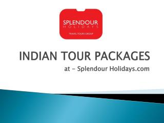 India Tour Pakages