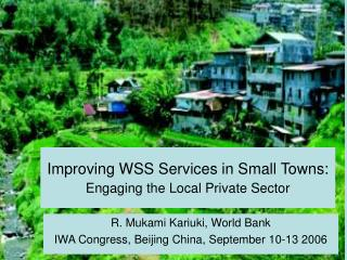 Improving WSS Services in Small Towns:  Engaging the Local Private Sector