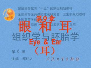 眼 和 耳 Eye  &  Ear