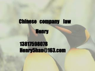 Chinese   company    law