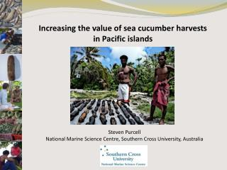 Increasing the value of sea cucumber harvests in Pacific islands