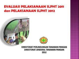 DIREKTORAT PERLINDUNGAN TANAMAN PANGAN DIREKTORAT JENDERAL TANAMAN PANGAN 2012