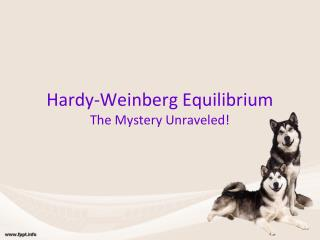 Hardy-Weinberg Equilibrium The Mystery Unraveled!