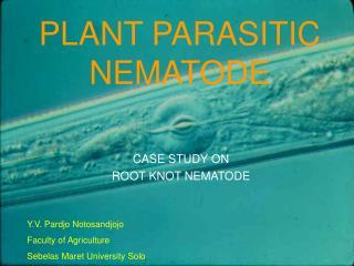PLANT PARASITIC NEMATODE
