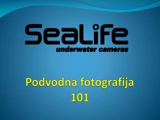 Podvodna fotografija 101