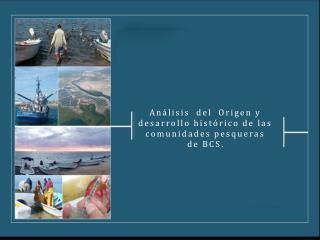 Análisis  del  Origen y desarrollo histórico de las comunidades pesqueras de BCS .