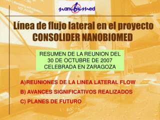 Línea de flujo lateral en el proyecto CONSOLIDER NANOBIOMED
