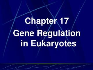 Chapter 17 Gene Regulation in Eukaryotes