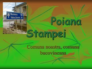 Poiana Stampei