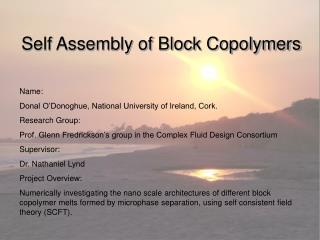 Self Assembly of Block Copolymers