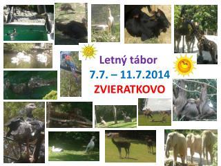 Letný tábor  7.7. – 11.7.2014 ZVIERATKOVO