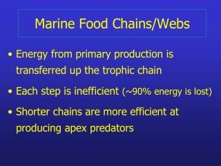 Marine Food Chains/Webs