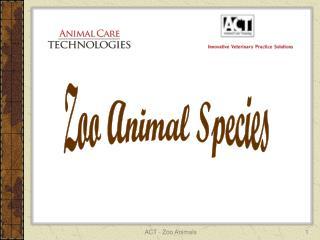 Zoo Animal Species