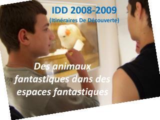 IDD 2008-2009 (Itinéraires De Découverte)