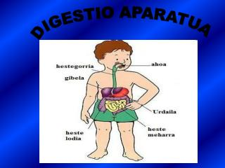 DIGESTIO APARATUA