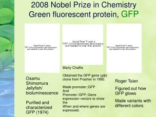 2008 Nobel Prize in Chemistry  Green fluorescent protein,  GFP