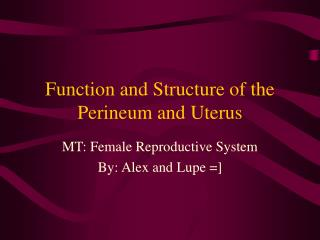 Function and Structure of the Perineum and Uterus