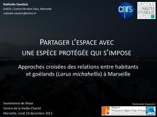 Soutenance de thèse Centre de la Vieille Charité Marseille, lundi 10 décembre 2012