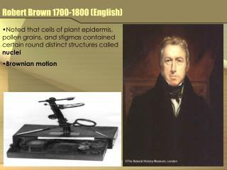 Robert Brown 1700-1800 (English)