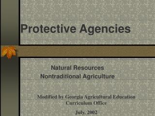 Protective Agencies