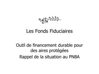 Les Fonds Fiduciaires
