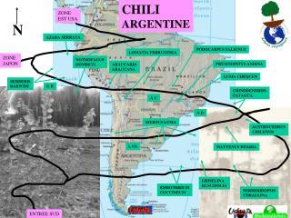 CHILI ARGENTINE