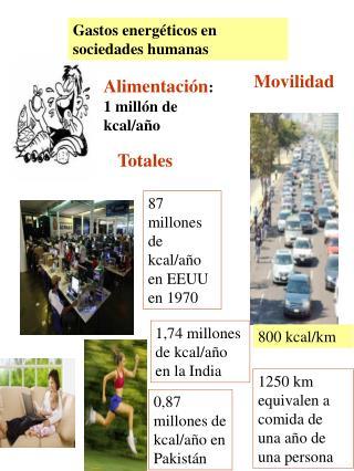 Alimentación : 1 millón de kcal/año