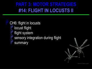 CH6: flight in locusts  locust flight  flight system  sensory integration during flight  summary