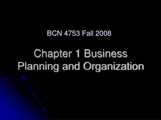 Chapter 1 Business Planning and Organization