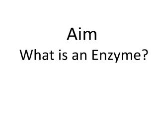Aim  What is an Enzyme?