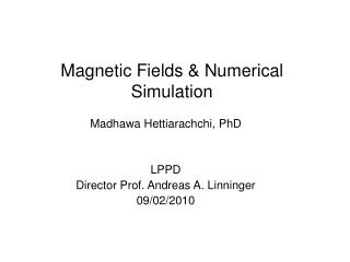Magnetic Fields & Numerical Simulation