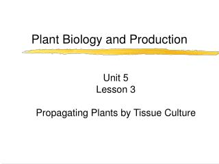 Plant Biology and Production