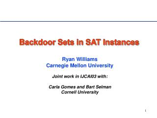 Backdoor Sets in SAT Instances
