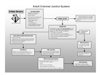 The Adult Criminal Justice System