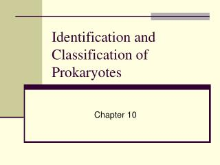 Identification and Classification of Prokaryotes