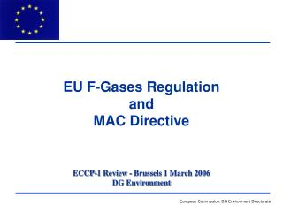 ECCP-1 Review - Brussels 1 March 2006 DG Environment